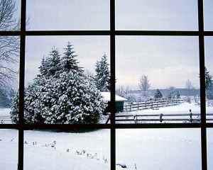 winter_depression