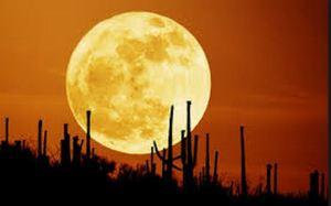 Full moon day