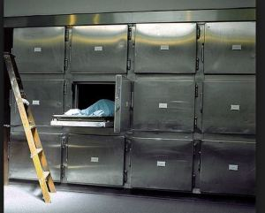 drawer in morgue