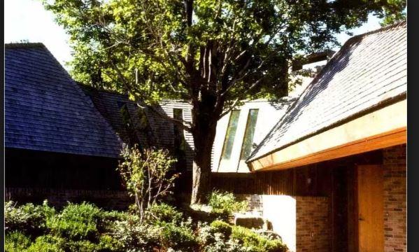 courtyardtree