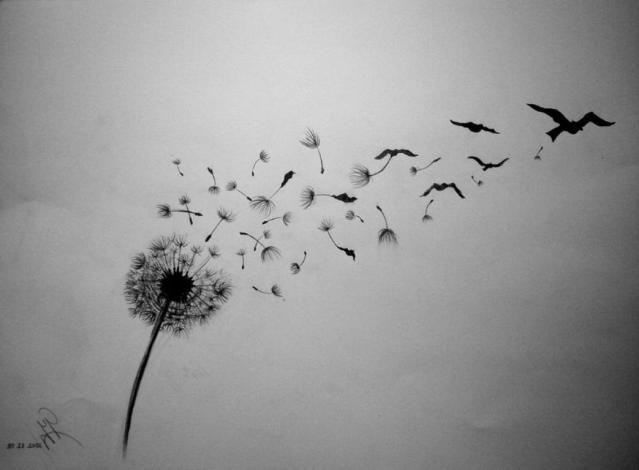 dandelionbird