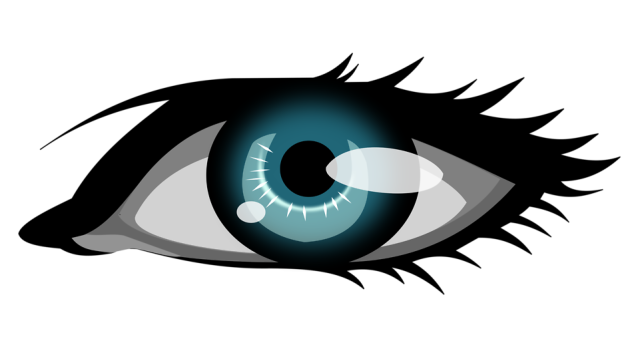 17192-illustration-of-a-human-eye-pv