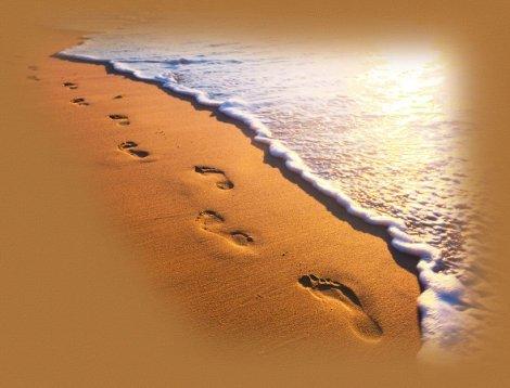 footprintstop