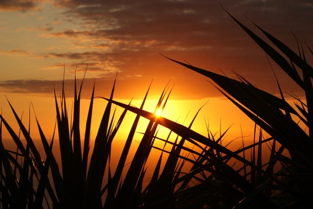 sunset-sun-evening-twilight-53543